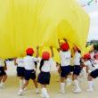 さくら幼稚園 運動会