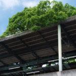 大木のそそり立つ駅~京阪 萱島駅